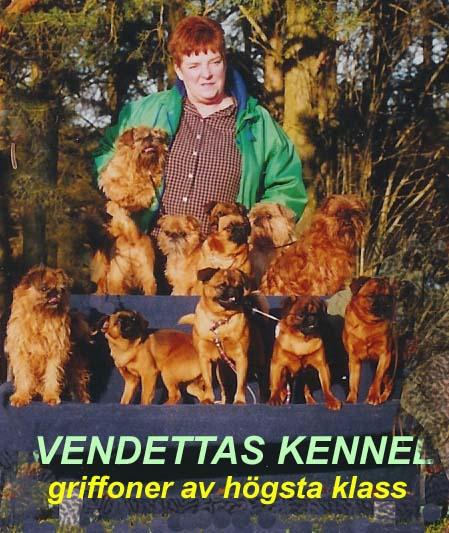 vendettas kennel